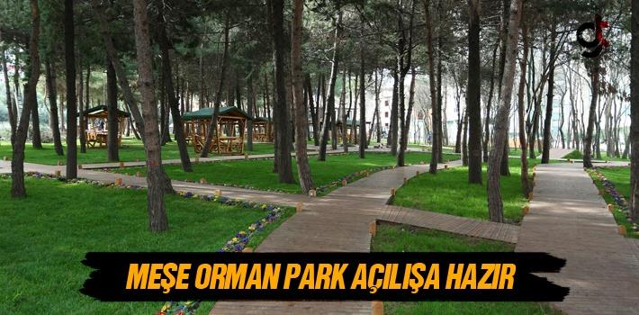 Meşe Orman Park Açılışa Hazır