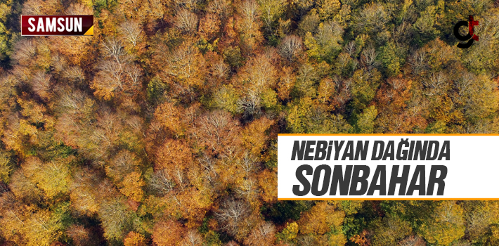 Samsun Nebiyan Dağında Sonbahar Görüntüsü Hayran...