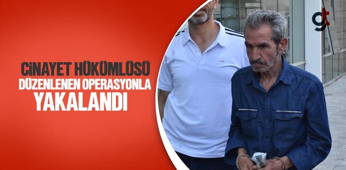 Samsun'da Cinayet Hükümlüsü Düzenlenen Operasyonla...