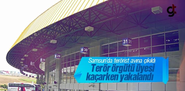 Samsun'da Terörist Avı Başladı