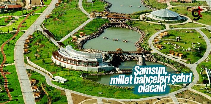 Zihni Şahin; Samsun, Millet Bahçeleri Şehri Olacak