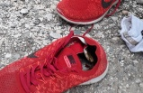 Ayakkabısının İçinden Çıkanlar Şok Etti
