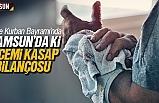 Kurban Bayramı'nda Samsun'da ki acemi kasap bilançosu